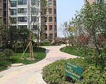 华厦绿城 实景图3
