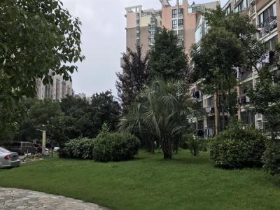 内港湖畔,欧风街旁,绝版多层,套房价格,别墅享受图片