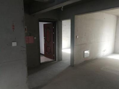 万达半岛花园旁市区新房飞机户型电梯房南北通透 3室2厅2卫看图片