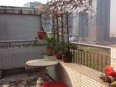 紫薇花园空中别墅200平 有车库  金色水岸 金融城图片