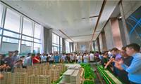 万科悦达·翡翠国际示范区暨销售中心火爆盛启