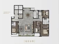 E墅户型图