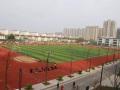 騰飛路學校 圖片
