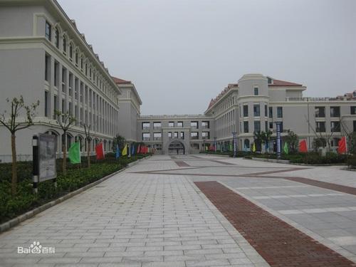 新洋實驗學校 圖片