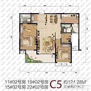 C5 C5
