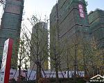 中海世纪公馆 在建工地与植被绿化
