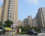 凤鸣缇香 前期项目沿路景观图