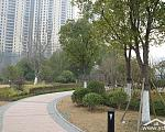 金辉城 实景图