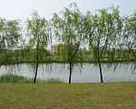 绿地天成苑 小区环河