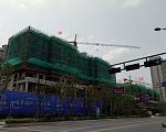 龙泊湾 8月施工进度