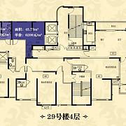 29#4层 29#4层