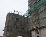 西城中央 11月施工进度