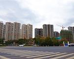 香苑东园 11月实景图