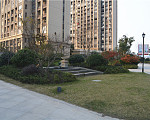 天成苑 2016年12月实景图