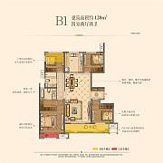 B1 B1