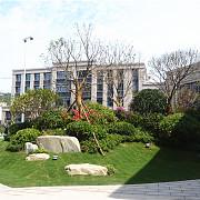 碧桂園·珺悅府 2017年6月實景圖