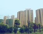 天成苑 2017年8月实景图